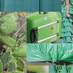 groen-fragment